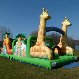 2-part Giraffe Course