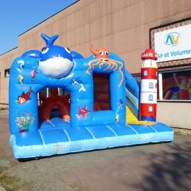 Inflatable Sea Playground