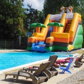 Toboggan Gonflable Aquatique Jungle pour piscine