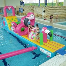 Pink Flamingo Aquatic Course