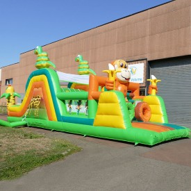 Inflatable Wild Animals Course