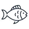 Jeux Aquatiques Gonflables
